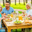 Family communicating and enjoying meal — Stock Photo #74729011