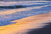 Seashore at sunset — Stok fotoğraf