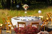 Wedding Reception Dining Table — Stock Photo