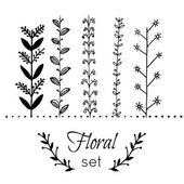 Set of vector floral elements for design — Stock Vector