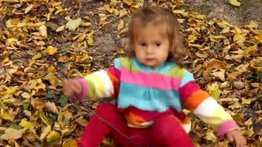 Small child playing in autumn park.Baby playing with yellow leaves.Little girl outdoors in autumn park.Portrait of a baby in autumn park. — Stock Video