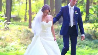 Caucasian bride and groom on the wedding day. Just Married, walking on the nature of the wedding day. Lovers, young bridal couple. Young couple enjoying each other. Holiday, wedding, happiness. — Stock Video