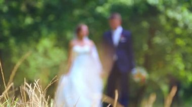 Caucasian bride and groom on the wedding day. Just Married, walking on the nature of the wedding day. Lovers, young bridal couple. Young couple enjoying each other. Holiday, wedding, happiness. — Stok video