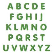 Metin yeşil çim büyük harf harf — Stok Vektör
