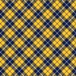 Blue orange tartan fabric texture diagonal pattern seamless — Stock Vector #64379287