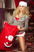 Happy woman , christmas time — Stock fotografie