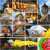 Collection of Buddha statues — Stock Photo