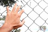 Man's hand clutching fence — Stock Photo