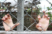 Child's hands clutching fence — Stock Photo