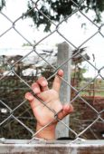 Child's hand clutching fence — Stock Photo