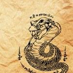 Asian style cobra — Stock Photo #61260389