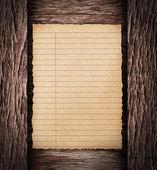 Paper sheet on dark wood — Stock Photo