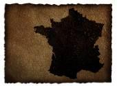 France map on leather — Fotografia Stock