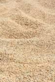 Unmilled rice texture — Stock Photo