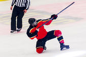 Ice Hockey - Player celebrating a goal — Stock Photo