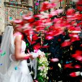 Wedding.couple with rose petals — Foto Stock