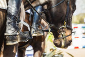 Equestrain Horse Show Jumping — Foto Stock