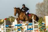 Reiterstandbild Pferd Springreiten — Stockfoto