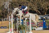 Equestrain hästhoppning — Stockfoto