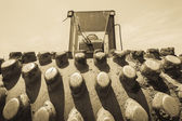 Roller  Compactor Earth Machine — Stock Photo