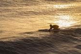 Lifeguard Paddling Rescue Craft Waves — Stock Photo