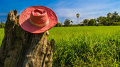 Farmer hat — ストック写真