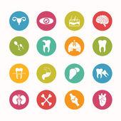 Human anatomy  icons set Circle Series - eps.10 — Stockvector