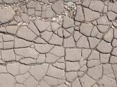Many cracks — Foto de Stock
