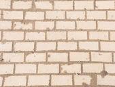 Path of bricks — Stock Photo