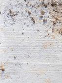 Dirty cement floor — Stock Photo