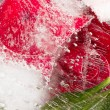 Aromatic organic red abstraction — Stock Photo #72446915