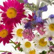Cheerful summer bouquet — Stock Photo #76824505