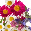 Cheerful bouquet — Stock Photo #78095812