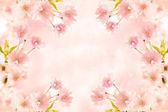 Abstrakte rosa blume-hintergrund — Stockfoto