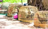 Thai bamboo coop — Stock Photo