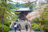 Spring spot in Nara at the ancient temple, 'Hasedera' — Stockfoto