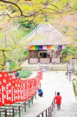 Spring spot in Nara at the ancient temple, 'Hasedera' — Stock Photo