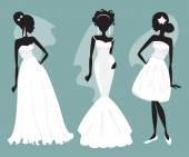 Set brides in various wedding dresses. Vector illustration — Stock Vector