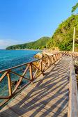Wood bridge on the sea — Stock Photo
