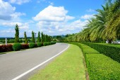 Road in the park with blue sky — Stock Photo