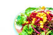 Close up of fresh salad isolated — Stock Photo