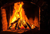 The fire burning firewood — Stock Photo