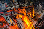 The fire burning firewood — Photo