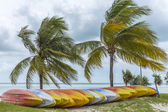Bright coloured kayaks on the beach — Stock Photo