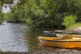 Kayaks in Everglades national park, Florida, USA — Stock Photo