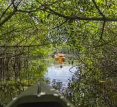 Kayaking in Everglades National park, Florida, USA — Stock Photo