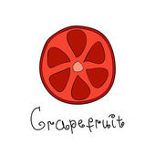 Doodle grapefruit slice — 图库矢量图片