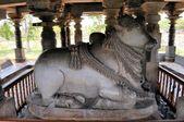 Hoysaleshwara hinduistický chrám, Halebid, Indie — Stock fotografie