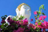 Sitting Buddha statue in Northern Thailand — Foto de Stock