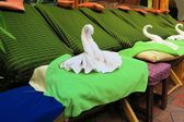 Thai Spa massage chairs with swan towel — Stock Photo